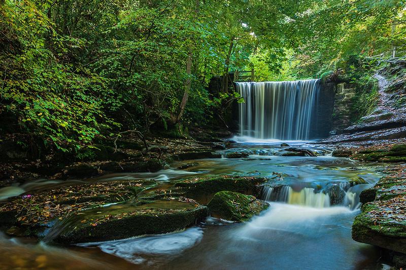 plas power waterfall woods bersham clywedog Trail