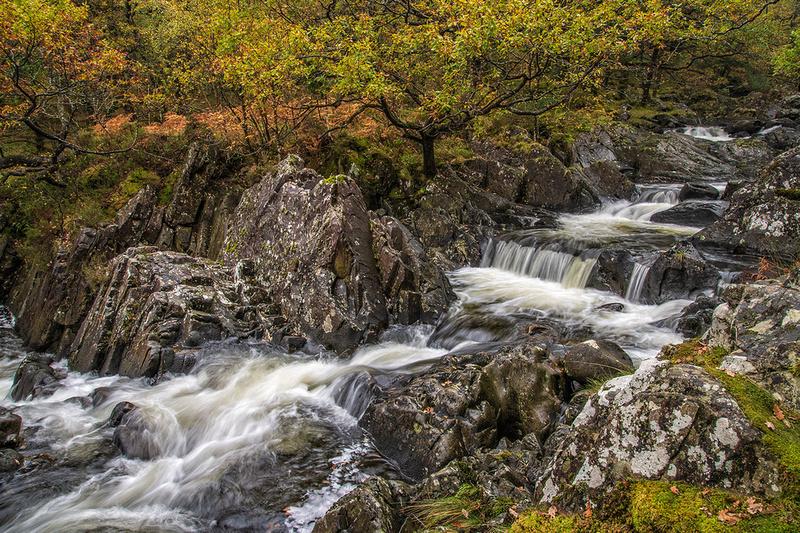autumn colours at coed ganllwyd waterfalls snowdonia