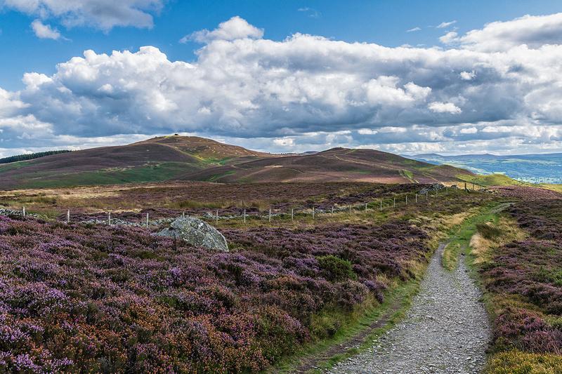 Moel Famau jubilee tower heather clad walk clwydian hills north wales photo
